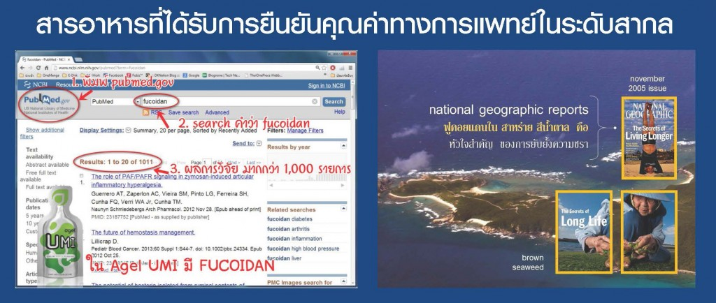 special_report_fucoindan-inter